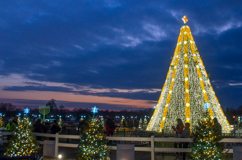 national-christmas-tree-state-trees-and-national-menorah-at-dusk_credit-tim-brown-iip-photo-archive