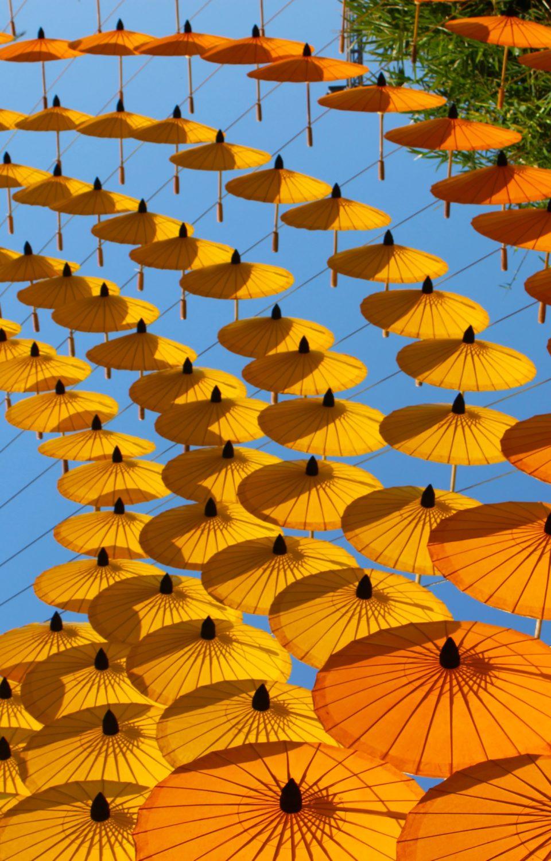 Collection of Umbrella's
