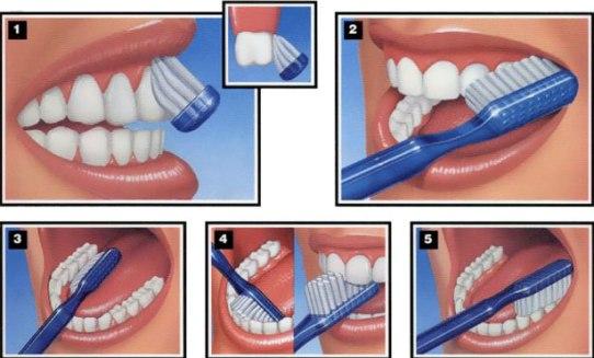 come pulirsi i denti