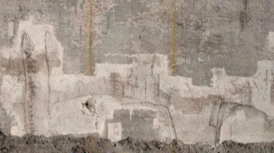 tracce inedite di leonardo schizzi leonardo sala delle asse