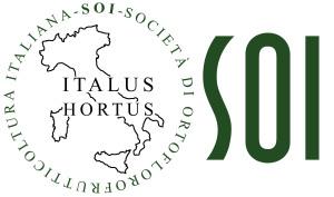 Logo SOI nuovo, 2013