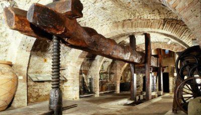 museo del vino muvit