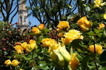 Perugia, ai Giardini del Frontone torna il Perugia Flower Show