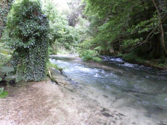 valnerina ecosistemi acquatici