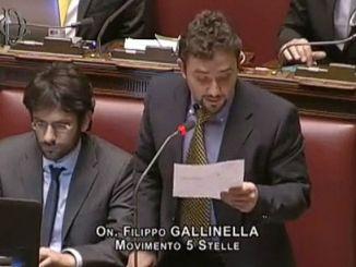 Attività parlamentare, il deputato umbro Gallinella traccia il bilancio di fine anno