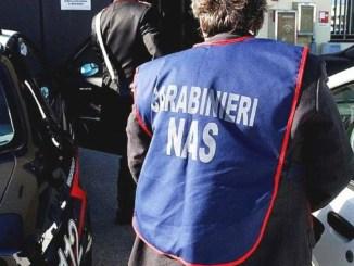 Escrementi di topo su alimenti, Nas Perugia chiude due ristoranti