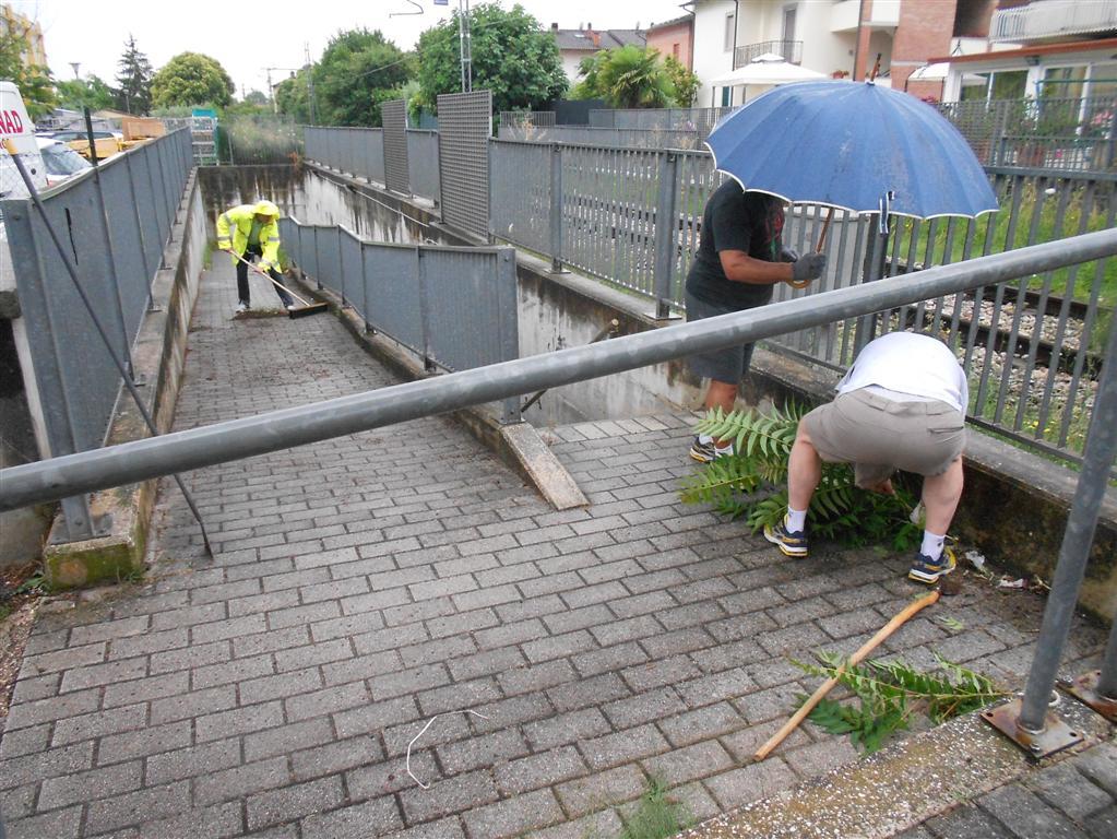 Passi di salute e pro ponte pulizia 002 (Medium)