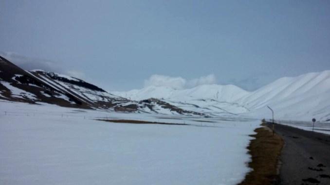 Desertificazione, cornacchie e cinghiali, ecco cosa rimane di Castelluccio da Norcia