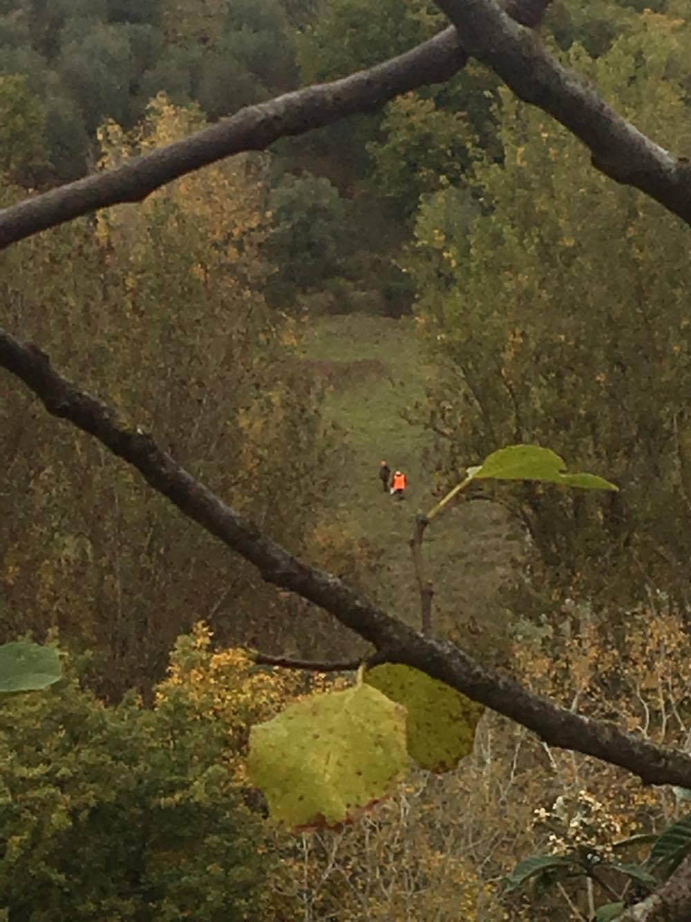 Cacciatori sparano a cento metri dalle case, succede a Perugia