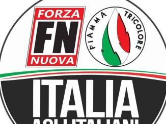Italia agli italiani, Forza Nuova e Fiamma Tricolore, urgenze e priorità