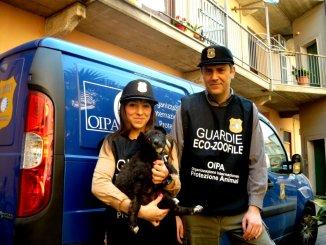 Corso guardie zoofile a Perugia ci si può iscrivere previo colloquio