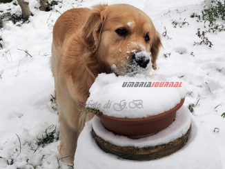 Maltempo, bollettino, nevicate da domenica sera in Umbria sopra 400-600