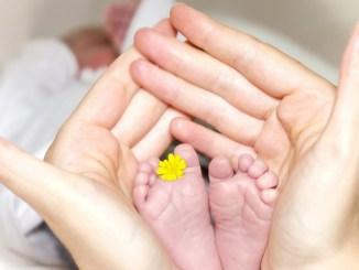 Reddito alle madri contro spopolamento della Dorsale appenninica umbra