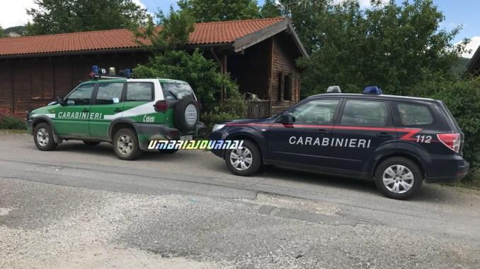 Maltrattamenti cani e gatti a Spoleto, intervengono i Carabinieri forestali