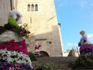 Todi Fiorita: giardino sostenibile, piante officinali, moda, colori della musica
