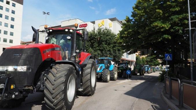 Agricoltura, Smacchi, entro marzo Agea pagherà agli agricoltori