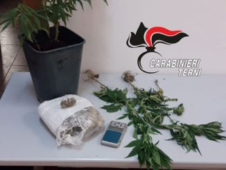 Arrestato dai carabinieri di Narni, aveva 200 grammi di marijuana