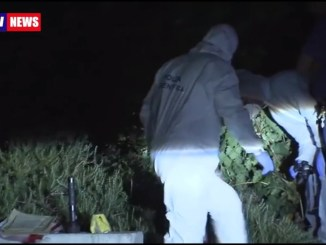 Neonato trovato morto, padre chiede un milione di risarcimento
