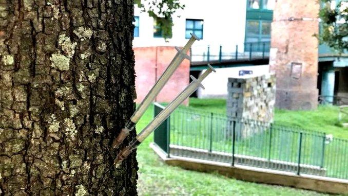 Siringhe infilzate in un tronco d'albero a Fontivegge di Perugia