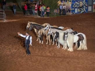 Gala Equestre alla mostra del cavallo a Città di Castello, tutto esaurito