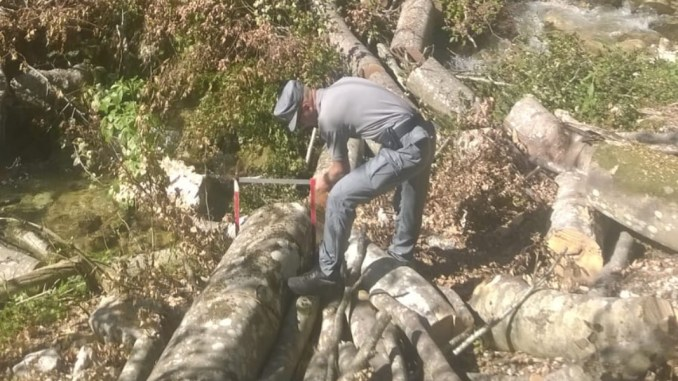 Alberi abbattuti all'Infernaccio Sibillini, Parco ha fatto sua parte