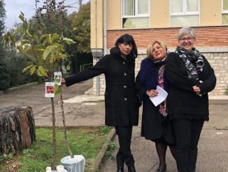 Militanti Foresta che Avanza con i ragazzi della FCA donano alberi all'Italia