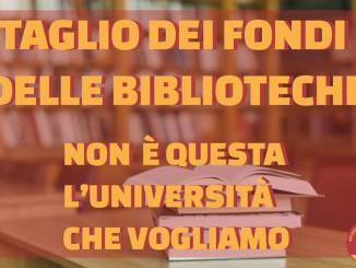 Università taglia fondi a biblioteche, reazione studenti dell'Udu