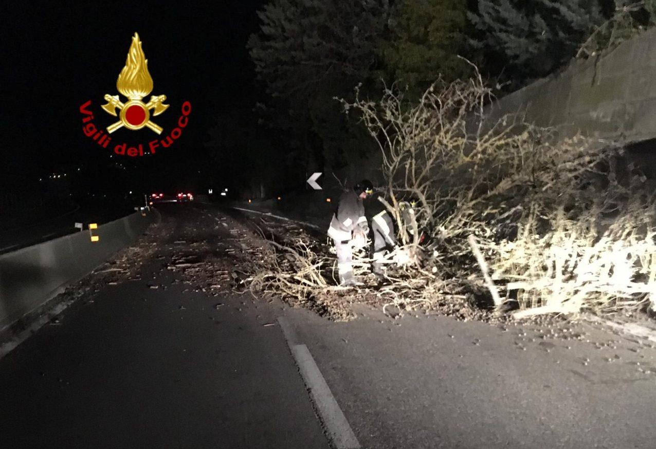 Vento forte, alberi e piante cadute in strada, anche incendi