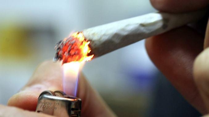 Cannabis Comunità Incontro, sentenza depenalizza materialmente e moralmente
