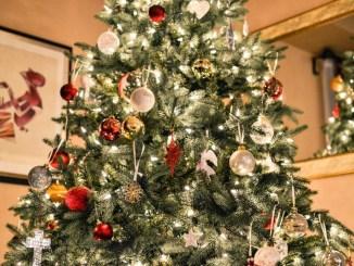 Festività ecologiche cinque regole per un albero di Natale sostenibile