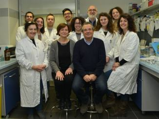 Proteina p53 e sviluppo tumori, studio scopre nuovo meccanismo molecolare
