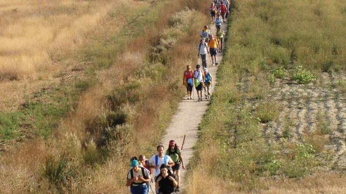Cammini francescani