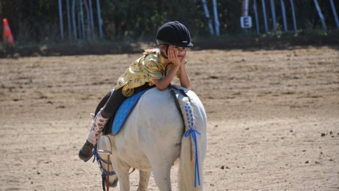 Non si può andare al maneggio per montare o muovere alla corda il cavallo