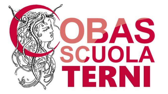 Convocazioni collegi docenti e OOCC in modalità telematica, duri i Cobas