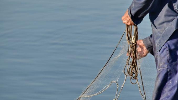Imprese agricole e pesca, Ok sblocco 100 milioni nazionali, ma si faccia in fretta
