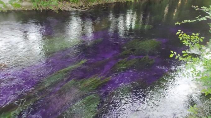 Incendio cartiera Trevi, il Clitunno si colora di viola, ma nessun problema ambientale