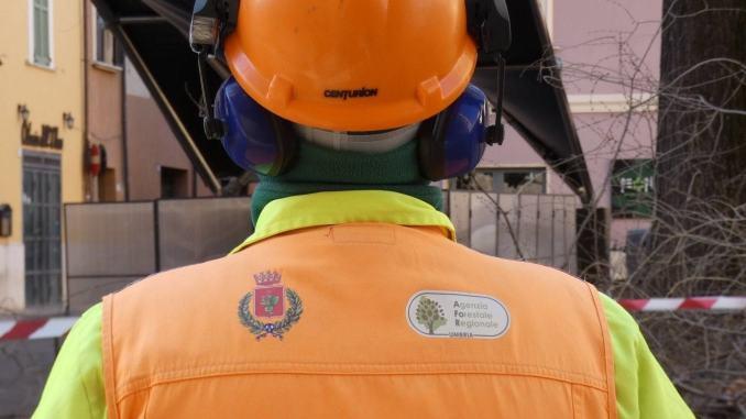 Agenzia forestale confronto Regione-sindacati sulla riorganizzazione