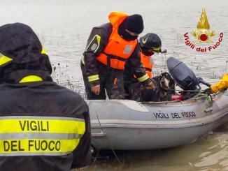 Linus e Lasko finiscono nelle acque del Corbara, Vigili del Fuoco li recuperano