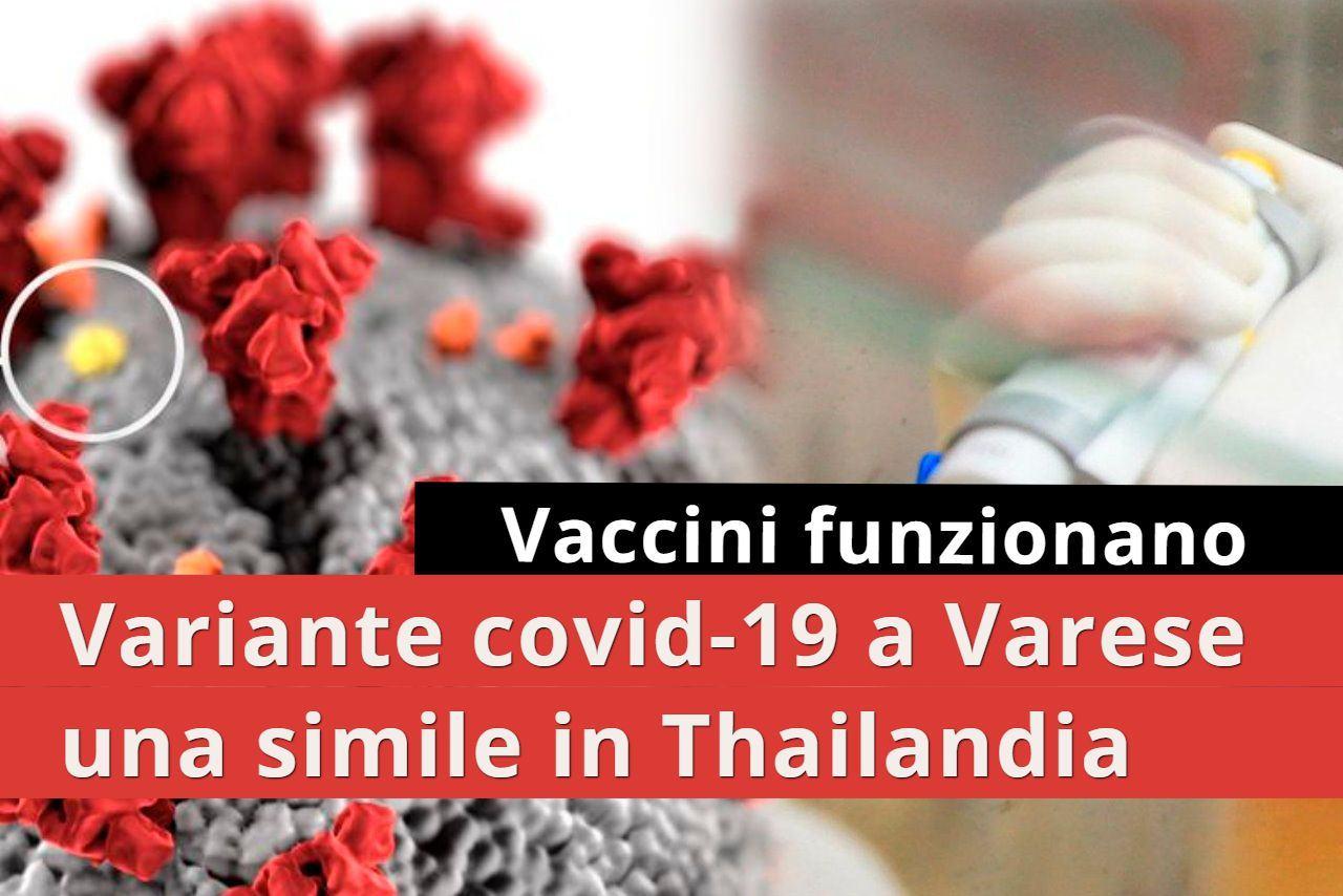 Identificata rarissima variante, a Varese solo altro caso in Thailandia