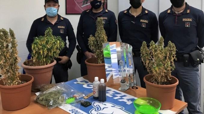 Ternano col pollice verde coltivava marijuana in casa, è nei guai