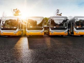 Autobus, crollano le immatricolazioni in Italia calo anche in Umbria