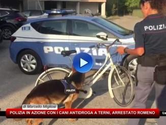 Videosorveglianza, microcamere e cani antidroga, 15 città sfruttano fondi scuole sicure