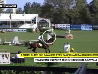 Equitazione, monta da Lavoro Narni campionati italiani e trofeo regioni