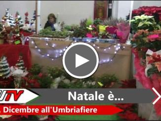 Expo Regalo diventa Natale è...a dicembre all'Umbriafiere