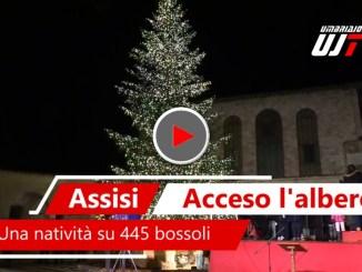 Accensione e benedizione albero di Natale e del Presepe, il video
