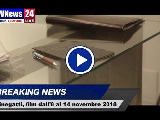Cinema a Perugia, i film in proiezione dall'8 al 14 novembre 2018