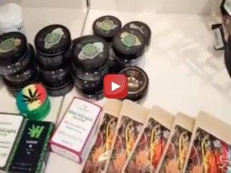 Macerata, chiusa tabaccheria che vende cannabis light