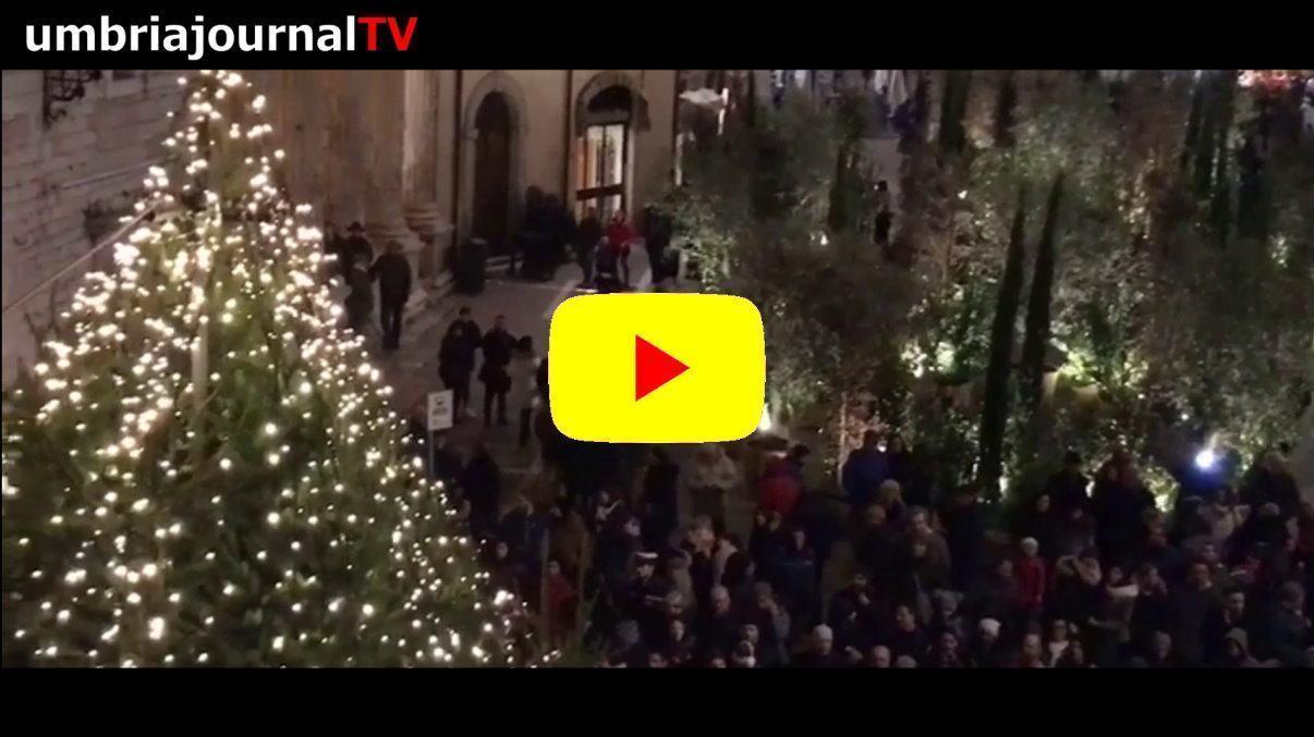 Natale ad Assisi, acceso l'albero in piazza del comune