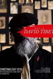 Who is David Tibet?
