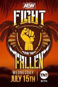 AEW Fight for the Fallen – 2020